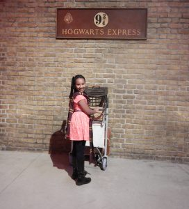 hawi-harry-potter-museum